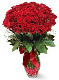 19 adet essiz kalitede kirmizi gül  Şırnak çiçek online çiçek siparişi