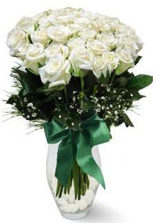 19 adet essiz kalitede beyaz gül  Şırnak online çiçek gönderme sipariş