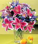 Şırnak yurtiçi ve yurtdışı çiçek siparişi  Sevgi bahçesi Özel  bir tercih