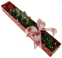 Tek kirmizi gül kutu içerisinde  Şırnak çiçek yolla , çiçek gönder , çiçekçi