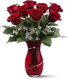 Vazo içinde 8 adet kirmizilar içinde güller  Şırnak cicek , cicekci