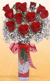 10 adet kirmizi gülden vazo tanzimi  Şırnak internetten çiçek siparişi