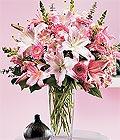 Şırnak çiçek yolla  Kazablanka biçme vazoda