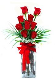 Şırnak ucuz çiçek gönder  9 adet mika yada cam vazoda gül tanzimi