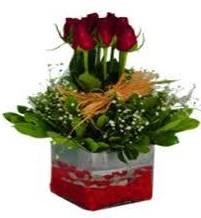 Şırnak çiçek , çiçekçi , çiçekçilik  7 adet mika yada cam vazoda gül tanzimi