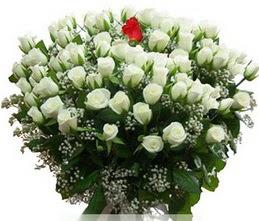 Şırnak çiçek siparişi vermek  100 adet beyaz 1 adet kirmizi gül buketi