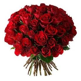 Şırnak çiçekçi mağazası  33 adet kırmızı gül buketi