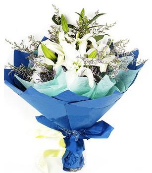 Şırnak çiçek servisi , çiçekçi adresleri  4 adet dal kazablankadan görsel buket