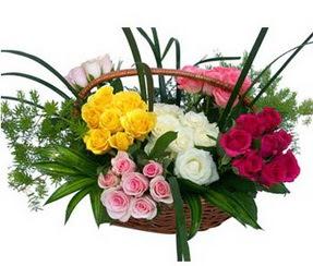 Şırnak çiçek siparişi sitesi  35 adet rengarenk güllerden sepet tanzimi