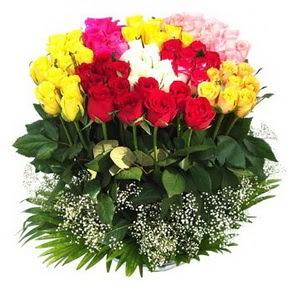 Şırnak yurtiçi ve yurtdışı çiçek siparişi  51 adet renkli güllerden aranjman tanzimi