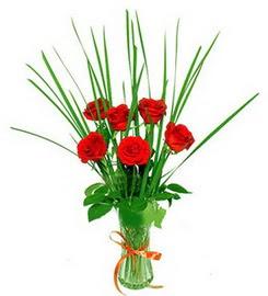 Şırnak çiçekçi mağazası  6 adet kırmızı güllerden vazo çiçeği