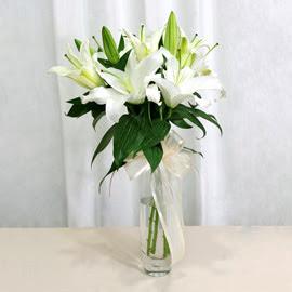 Şırnak çiçek servisi , çiçekçi adresleri  2 dal kazablanka ile yapılmış vazo çiçeği