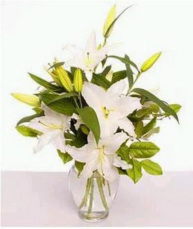 Şırnak çiçek , çiçekçi , çiçekçilik  2 dal cazablanca vazo çiçeği