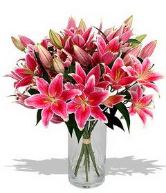 4 dal cazablanca görsel vazosu  Şırnak çiçekçiler