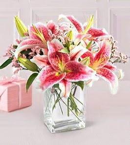 2 dal kazablanka görsel vazosu  Şırnak internetten çiçek siparişi