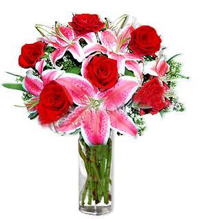 Şırnak çiçek satışı  1 dal cazablanca ve 6 kırmızı gül çiçeği