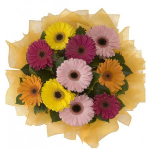 Şırnak çiçek gönderme  11 adet karışık gerbera çiçeği buketi