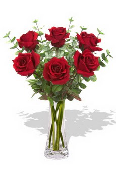 Şırnak çiçekçiler  6 kırmızı gül vazosu