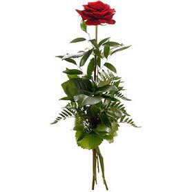 Şırnak çiçek gönderme sitemiz güvenlidir  1 adet kırmızı gülden buket