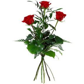 Şırnak hediye sevgilime hediye çiçek  3 adet kırmızı gülden buket