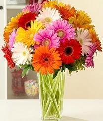 Şırnak güvenli kaliteli hızlı çiçek  15 adet gerbera çiçek vazosu