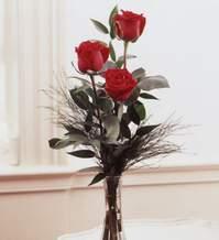 Şırnak çiçek siparişi vermek  Vazoda 3 adet güzel gül