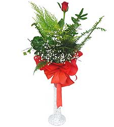 Şırnak çiçek servisi , çiçekçi adresleri  Cam vazoda masum tek gül