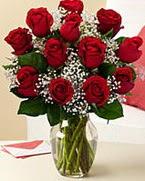 Sevgilime hediye 9 adet 1.ci kalite gül  Şırnak çiçek servisi , çiçekçi adresleri