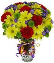 En güzel hediye karışık mevsim çiçeği  Şırnak internetten çiçek satışı