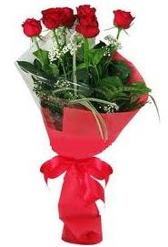 Çiçek yolla sitesinden 7 adet kırmızı gül  Şırnak çiçek siparişi vermek