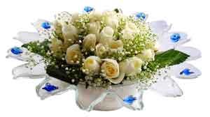 Şırnak kaliteli taze ve ucuz çiçekler  11 adet Beyaz güller özel cam tanzim