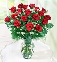 Şırnak çiçek siparişi vermek  9 adet mika yada vazoda kirmizi güller