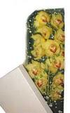 Şırnak çiçek , çiçekçi , çiçekçilik  Kutu içerisine dal cymbidium orkide
