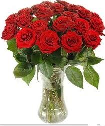 Şırnak yurtiçi ve yurtdışı çiçek siparişi  Vazoda 15 adet kırmızı gül tanzimi