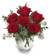 Vazo içerisinde 5 adet kırmızı gül  Şırnak çiçekçiler
