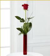 Vazo içerisinde 1 adet kırmızı gül  Şırnak cicek , cicekci