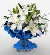 4 dal kazablanka çiçeğinden buket  Şırnak 14 şubat sevgililer günü çiçek