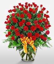 Görsel vazo içerisinde 101 adet gül  Şırnak 14 şubat sevgililer günü çiçek