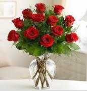Vazo içerisinde 12 kırmızı gül  Şırnak hediye çiçek yolla