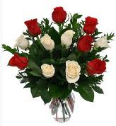 Vazo içerisinde 6 kırmızı 6 beyaz gül  Şırnak internetten çiçek satışı