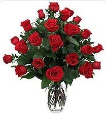 Şırnak internetten çiçek siparişi  24 adet kırmızı gülden vazo tanzimi