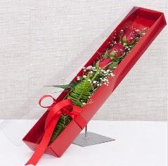 Kutu içerisinde 3 adet kırmızı gül  Şırnak uluslararası çiçek gönderme