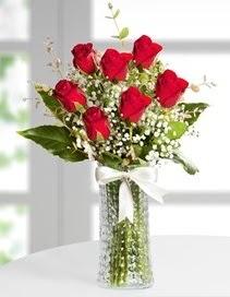 Cam vazoda 7 adet kırmızı gül  Şırnak çiçekçi mağazası