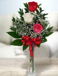 Camda 2 kırmızı 1 beyaz gül  Şırnak çiçek siparişi sitesi