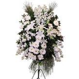Şırnak 14 şubat sevgililer günü çiçek  Ferforje beyaz renkli kazablanka