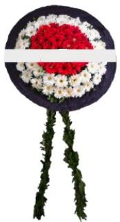 mozele çiçeği  Şırnak çiçek mağazası , çiçekçi adresleri
