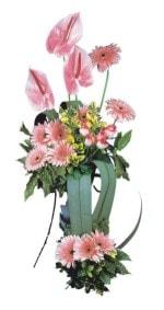 Şırnak çiçek yolla , çiçek gönder , çiçekçi   Pembe Antoryum Harikalar Rüyasi
