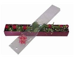 Şırnak çiçek servisi , çiçekçi adresleri   6 adet kirmizi gül kutu içinde