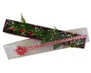 Şırnak internetten çiçek satışı  3 adet gül.kutu yaldizlidir.