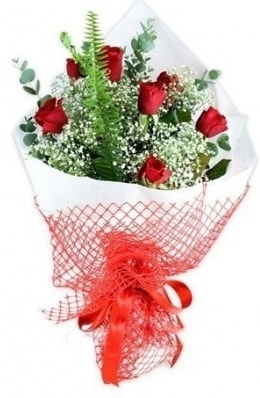 7 adet gülden kız arkadaşıma çiçek  Şırnak ucuz çiçek gönder